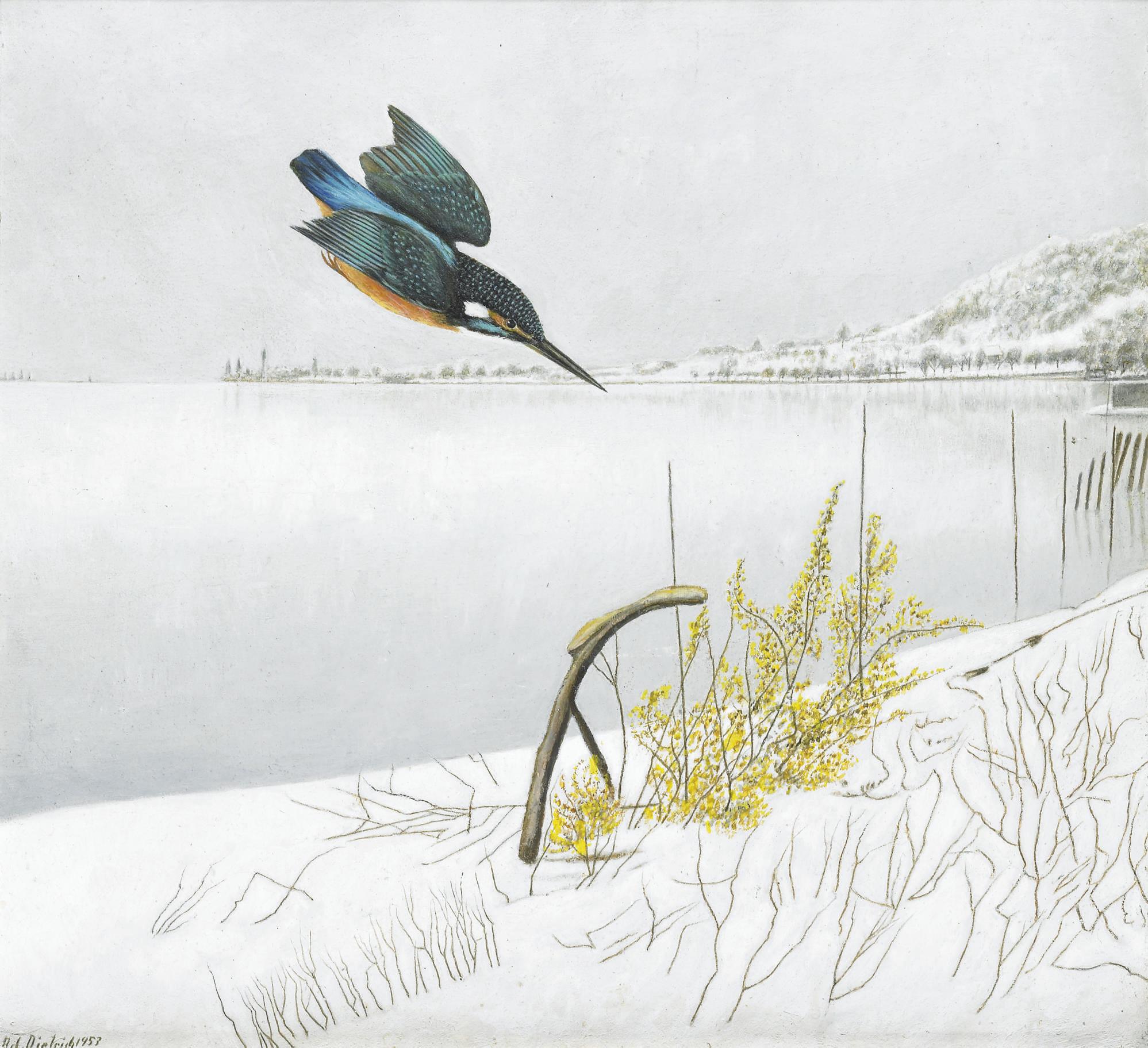 Eisvogel in Winterlandschaft, 1953