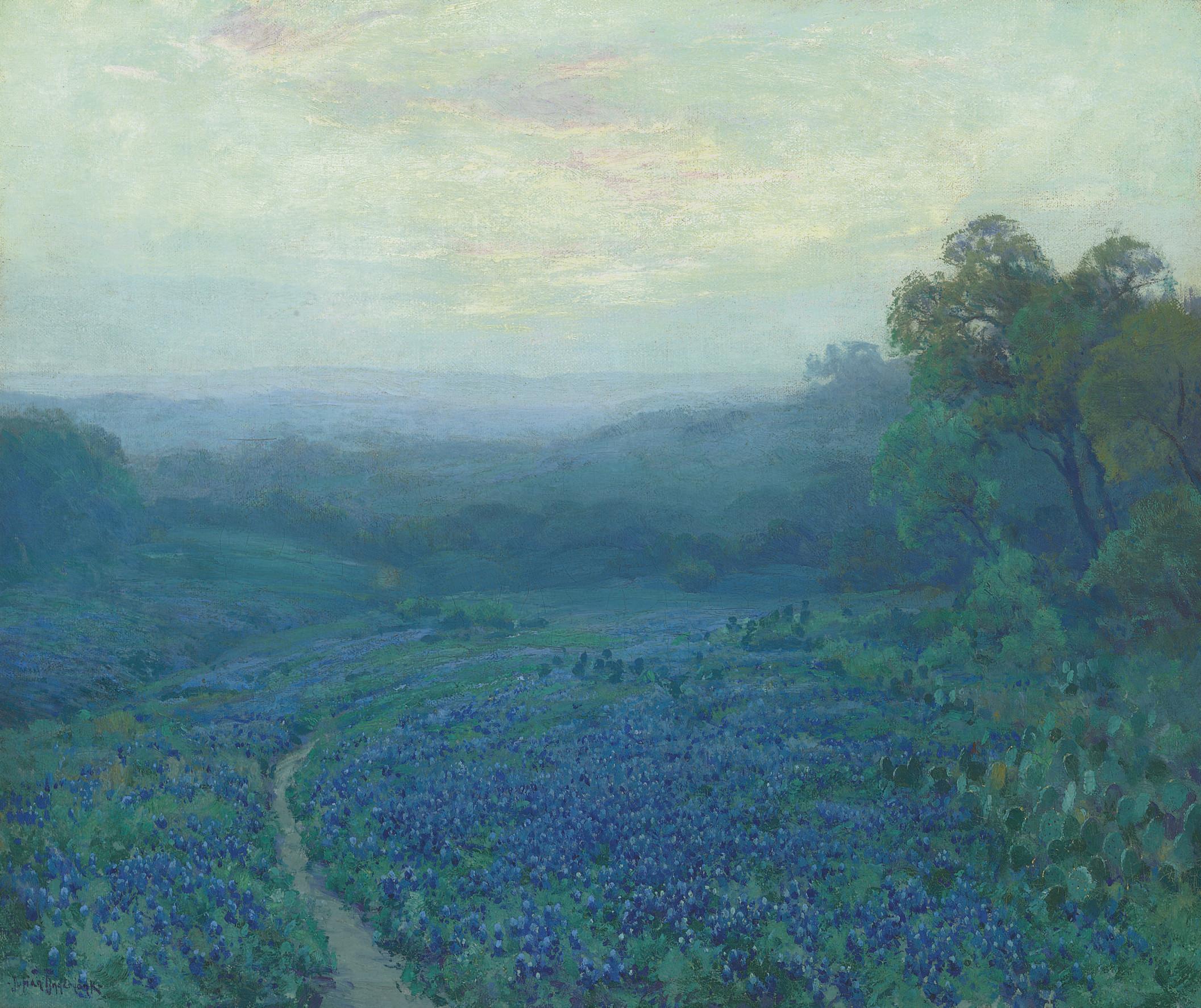Path Through a Field of Bluebonnets