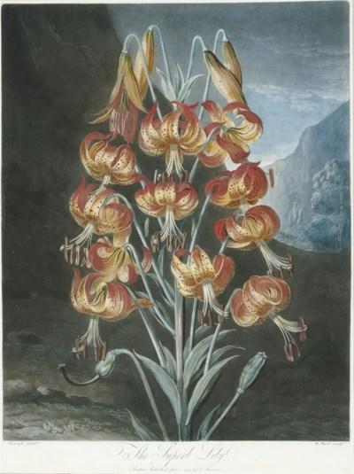 ROBERT JOHN THORNTON (1768-183