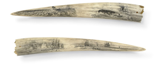 A pair of large scrimshaw walr