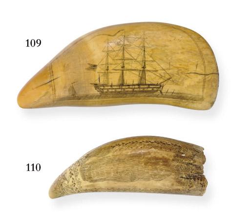 A 19th century scrimshaw whale
