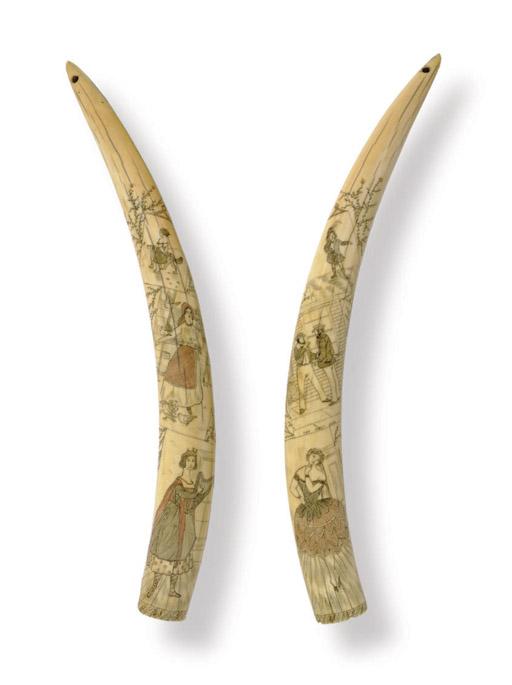 A pair of scrimshaw walrus tus