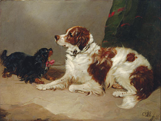 A Spaniel and a King Charles at play