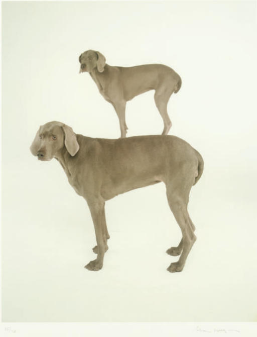 William Wegman (b. 1943)
