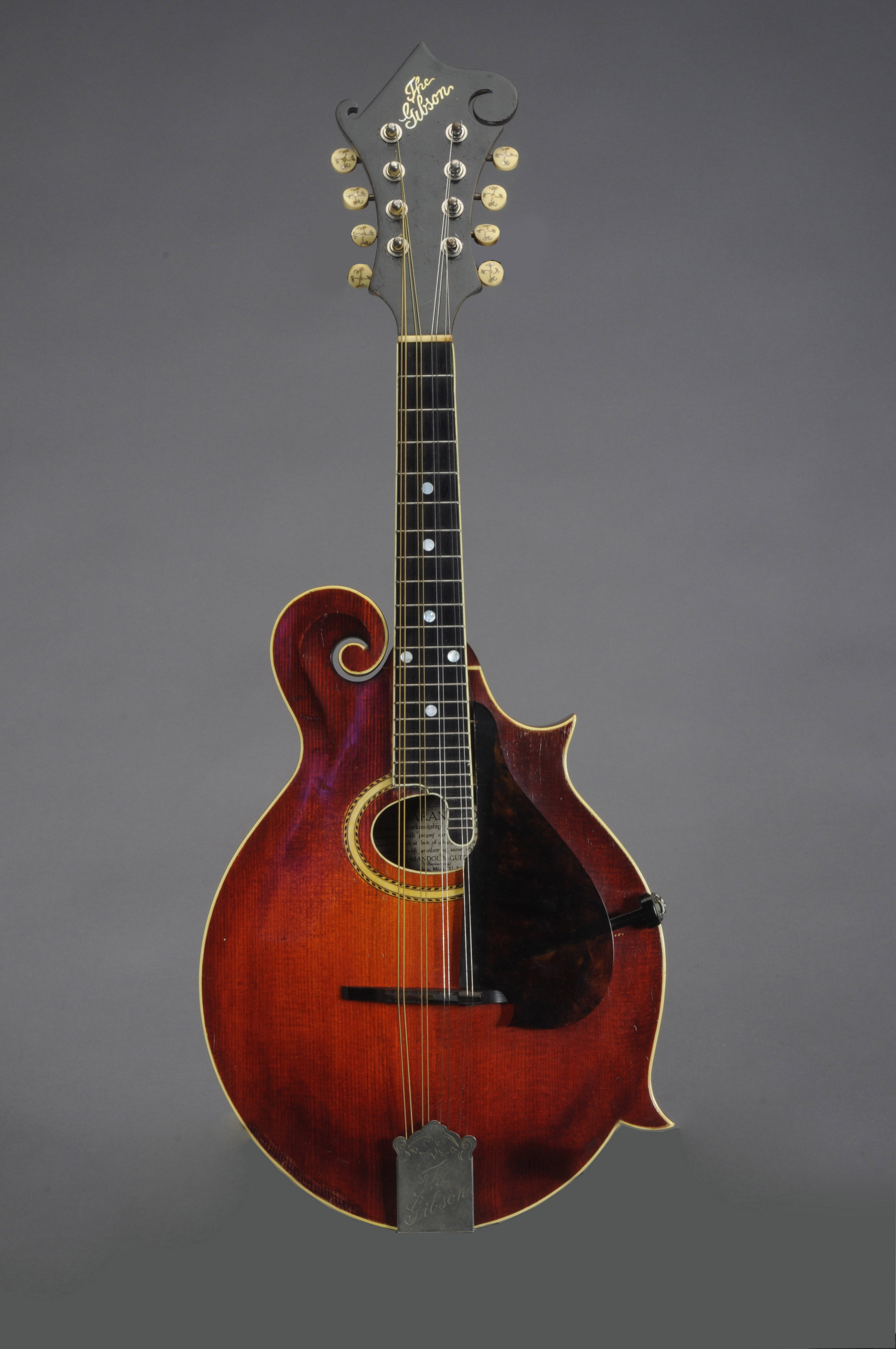 THE GIBSON MANDOLIN-GUITAR COMPANY