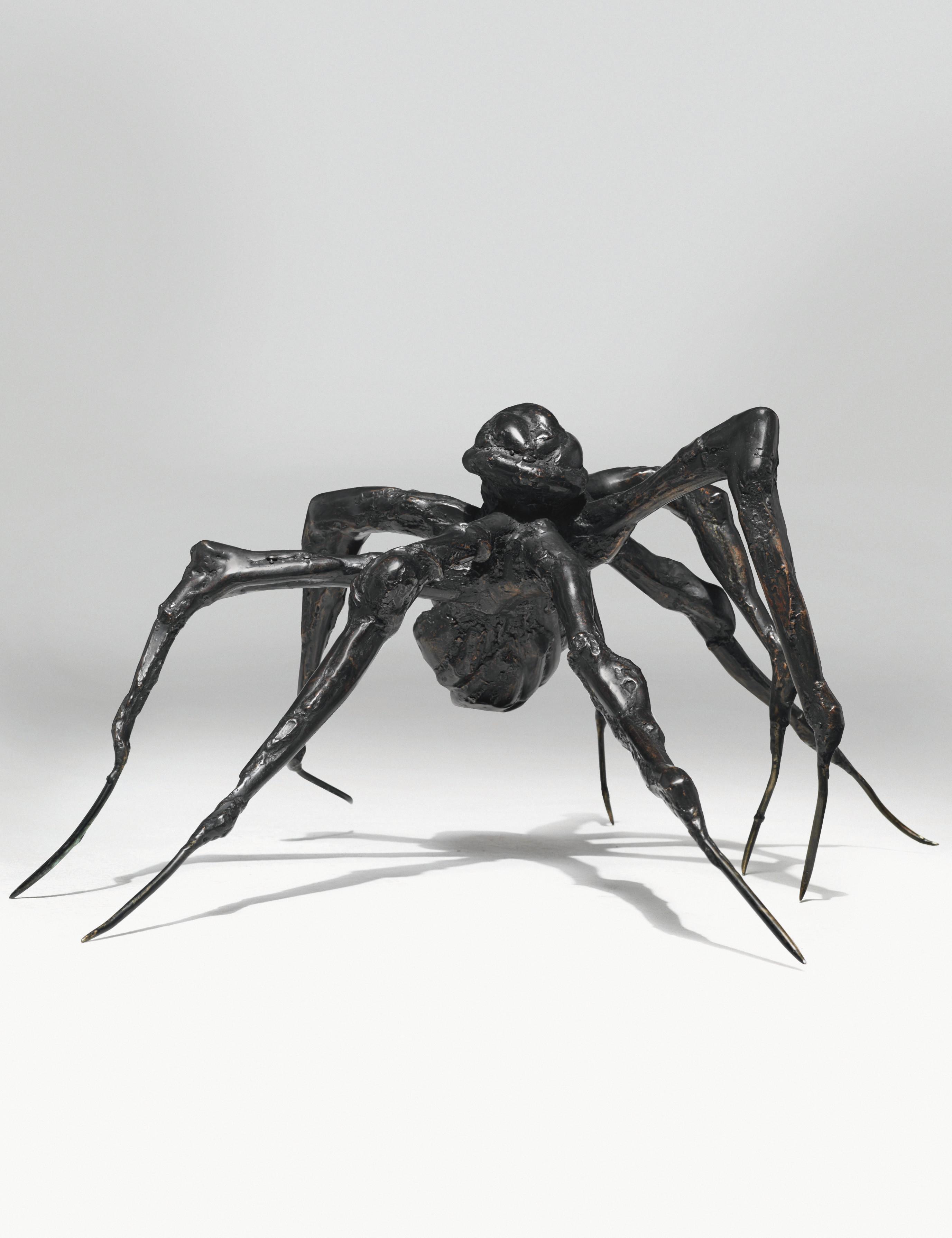 Spider V