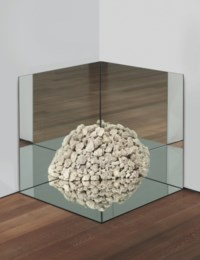 Nonsite Petrified Coral with Mirrors