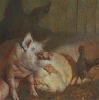 Night Pigs
