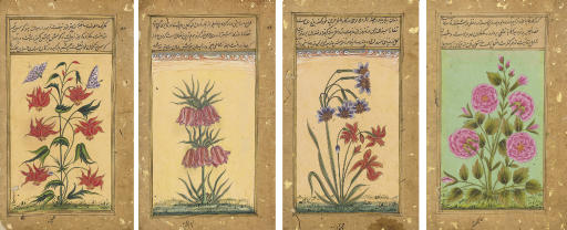 Four Flower studies after the