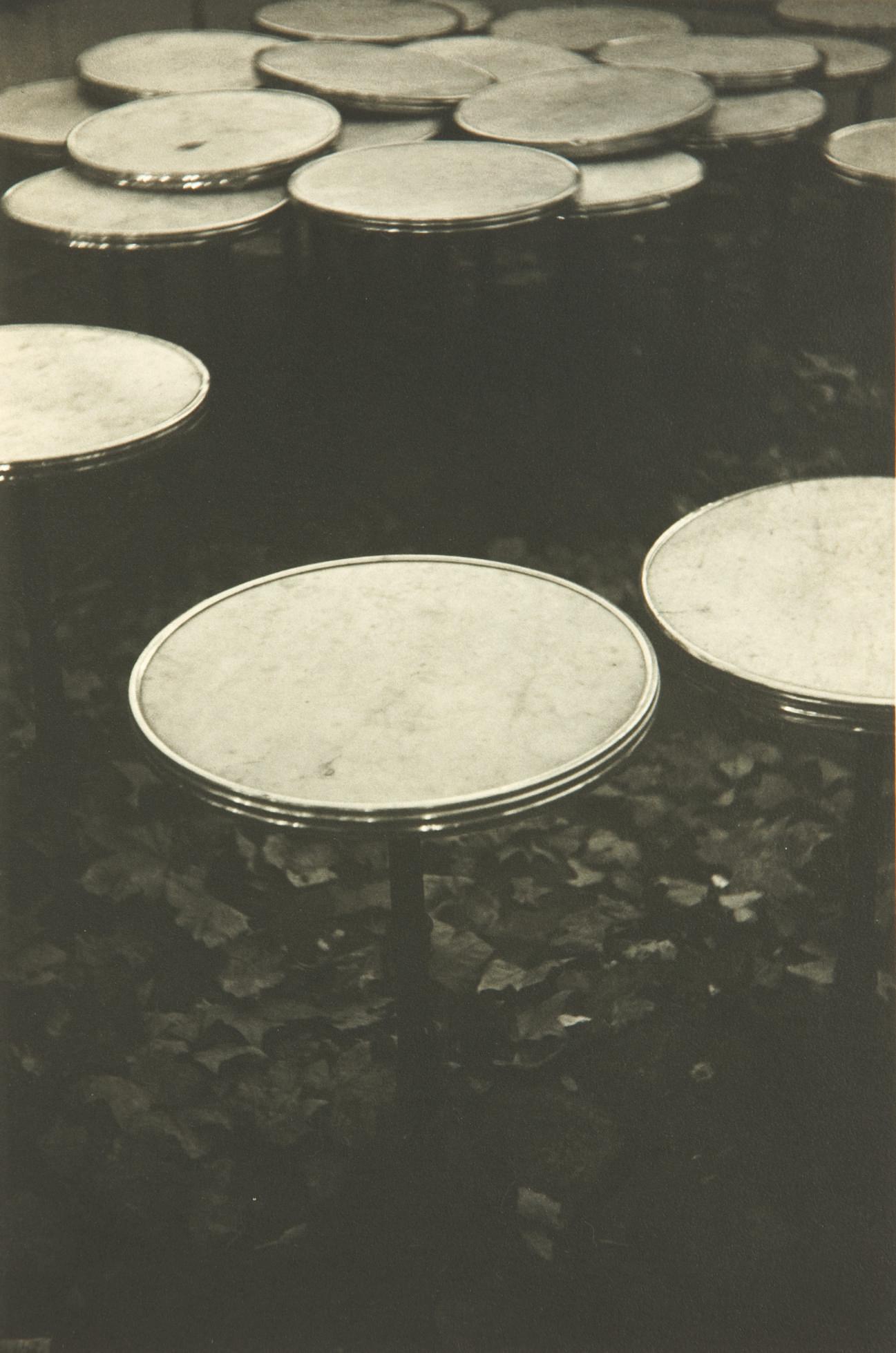 Café des Deux Magots, Waterlillies, 1993