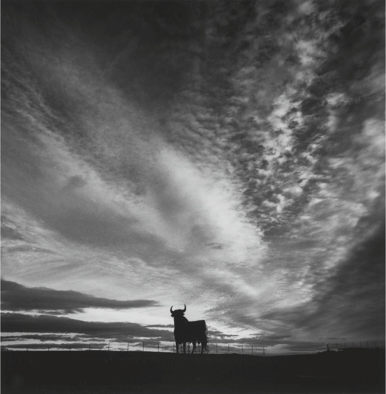 El Toro, Madridejos, La Mancha, Spain, 1996