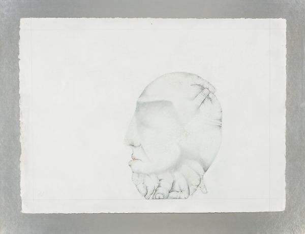 OLGA DE AMARAL (NE EN 1932)