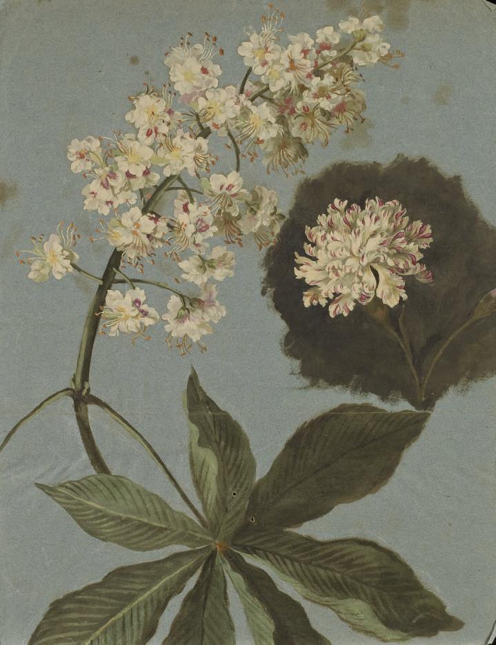 Branches de maronniers en fleurs avec un oeillet blanc et rose
