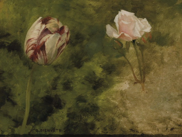 Tulipe et rose