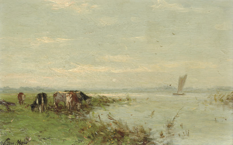 Grazing cows at a river