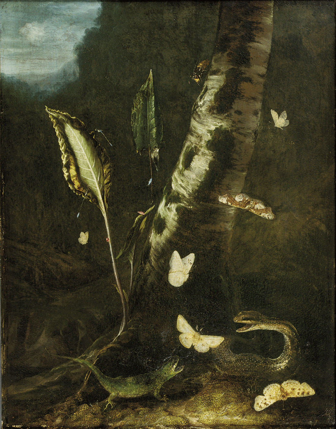 Otto Marseus van Schrieck (Nij