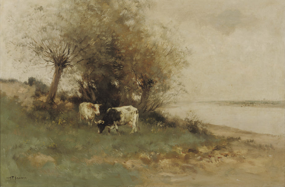 Cattle grazing near the river