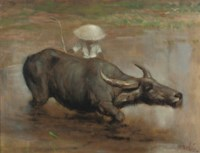 A Waterbuffalo Working the Sawah