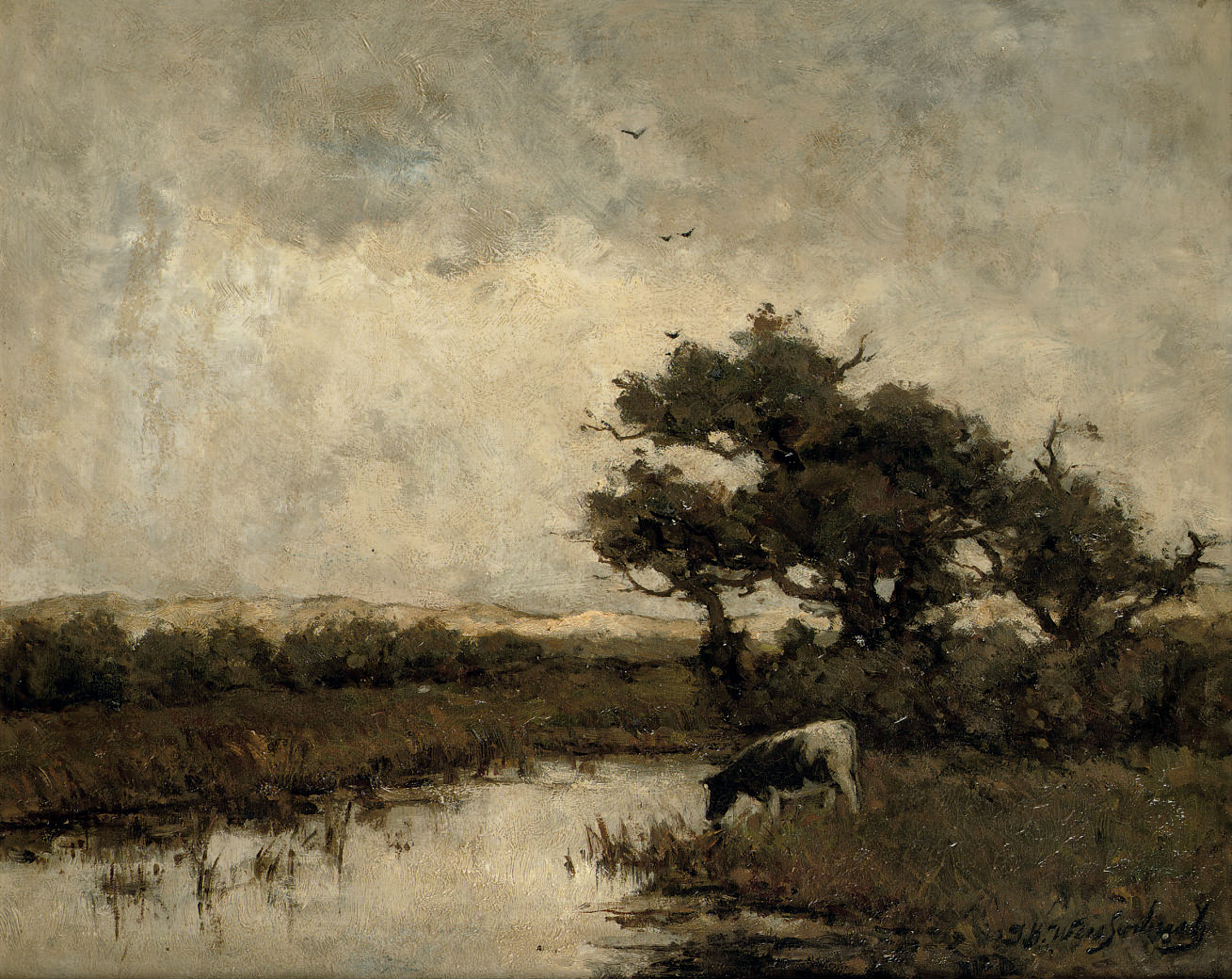 A cow in the dunes