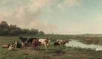 Watering cattle in a panoramic summer landscape
