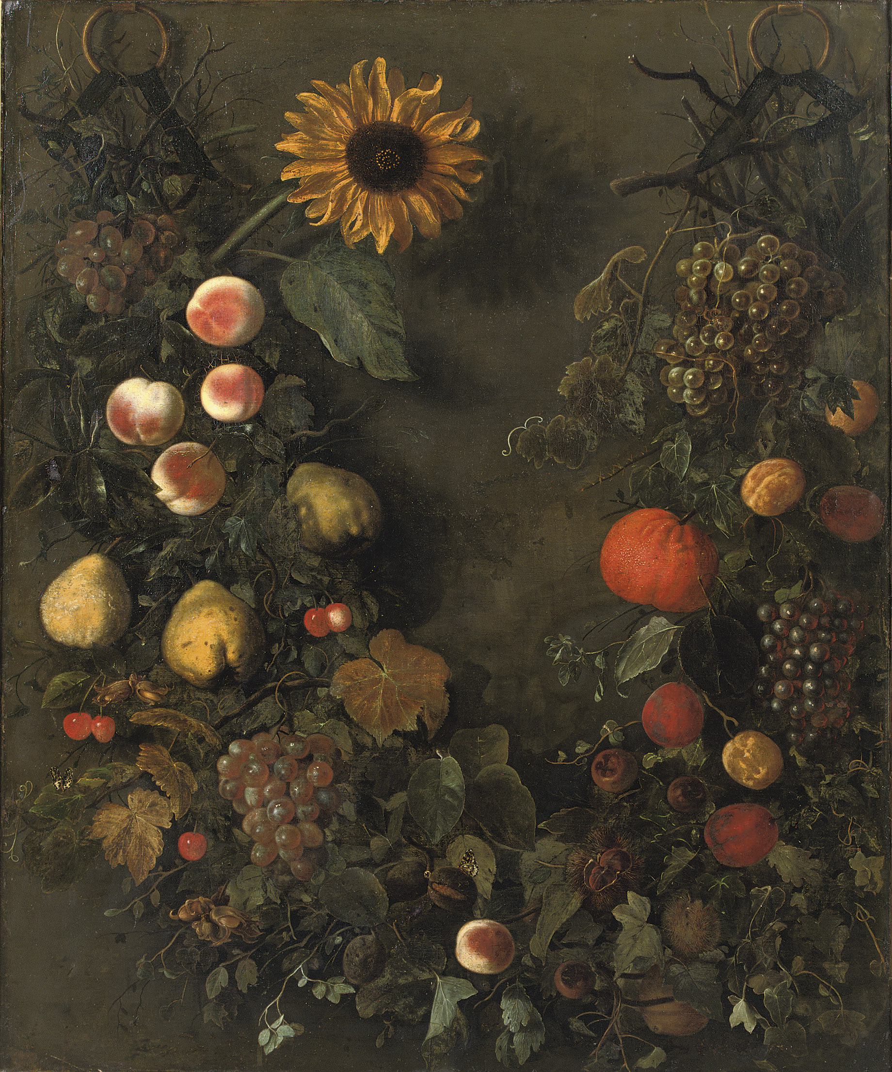 A fruit garland with grapes, peaches, mandarins, cherries, pears and other fruit, with butterflies and a sunflower