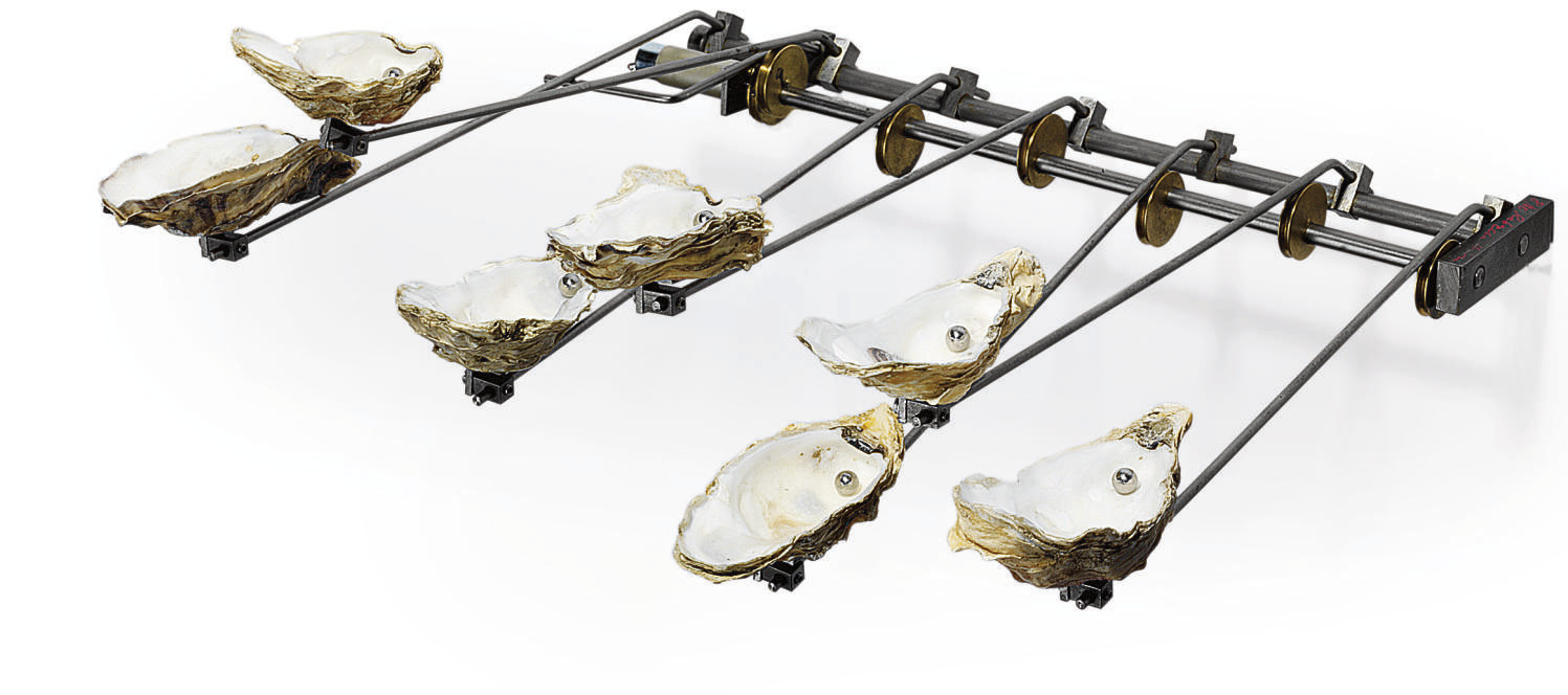 Oyster Piano