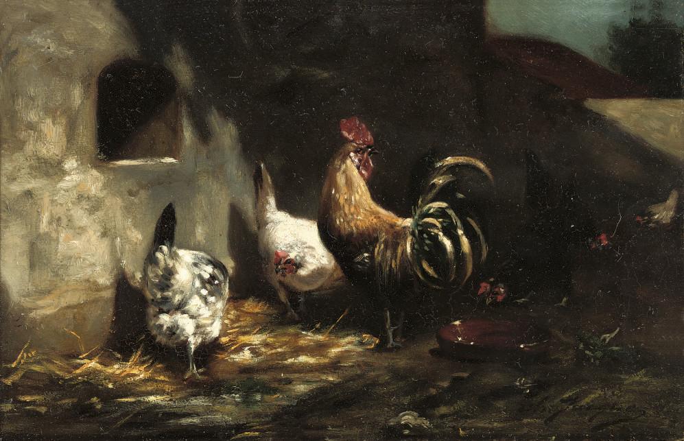 Poultry feeding in the farmyard