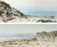 Driftwood on the beach at Bideford, Devon; and The dunes at Bideford