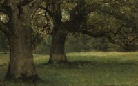 The Oaks at Kidbrooke Park