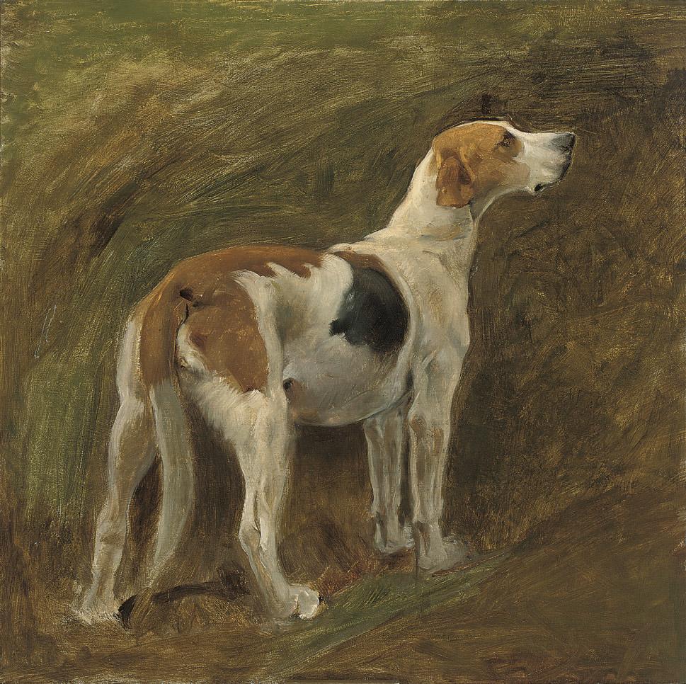 A favourite hound, J. Gwen