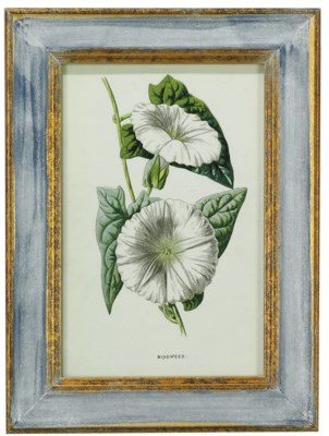 A SET OF TWELVE LITHOGRAPHS OF