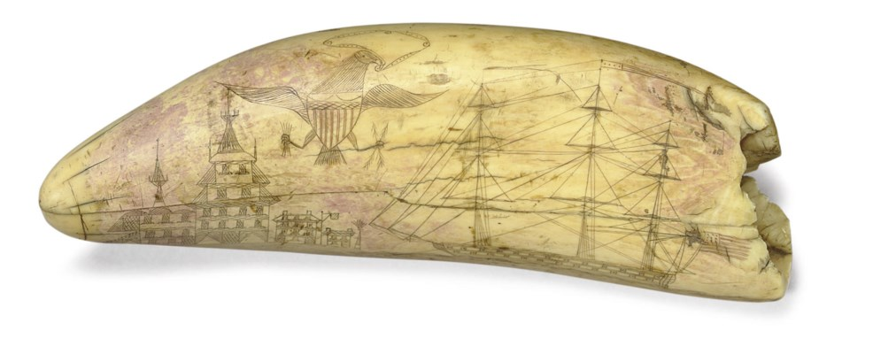 A large scrimshaw whales tooth