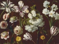 Purple tulips, white flowering prunus, narcissus and pink chrysanthemum