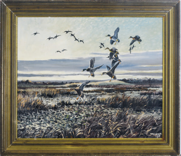Geese landing in the marshes