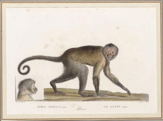 Simon-Charles Miger (1736-1820
