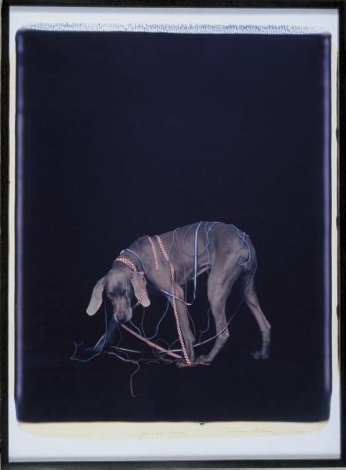 Finish Line, 1992