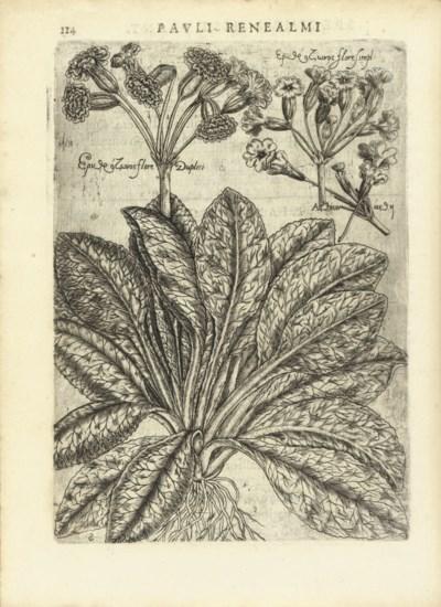 RENEAULME, Paul de (1560-1624)