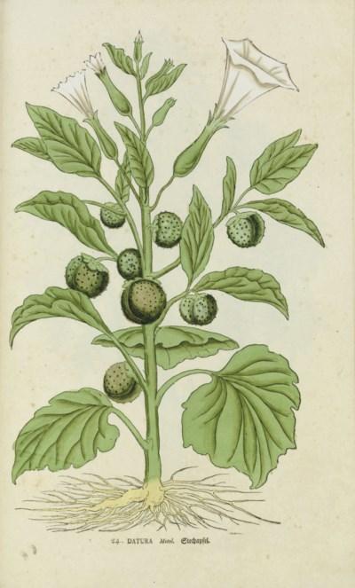 SCHINZ, Salomon (1734-1784). [
