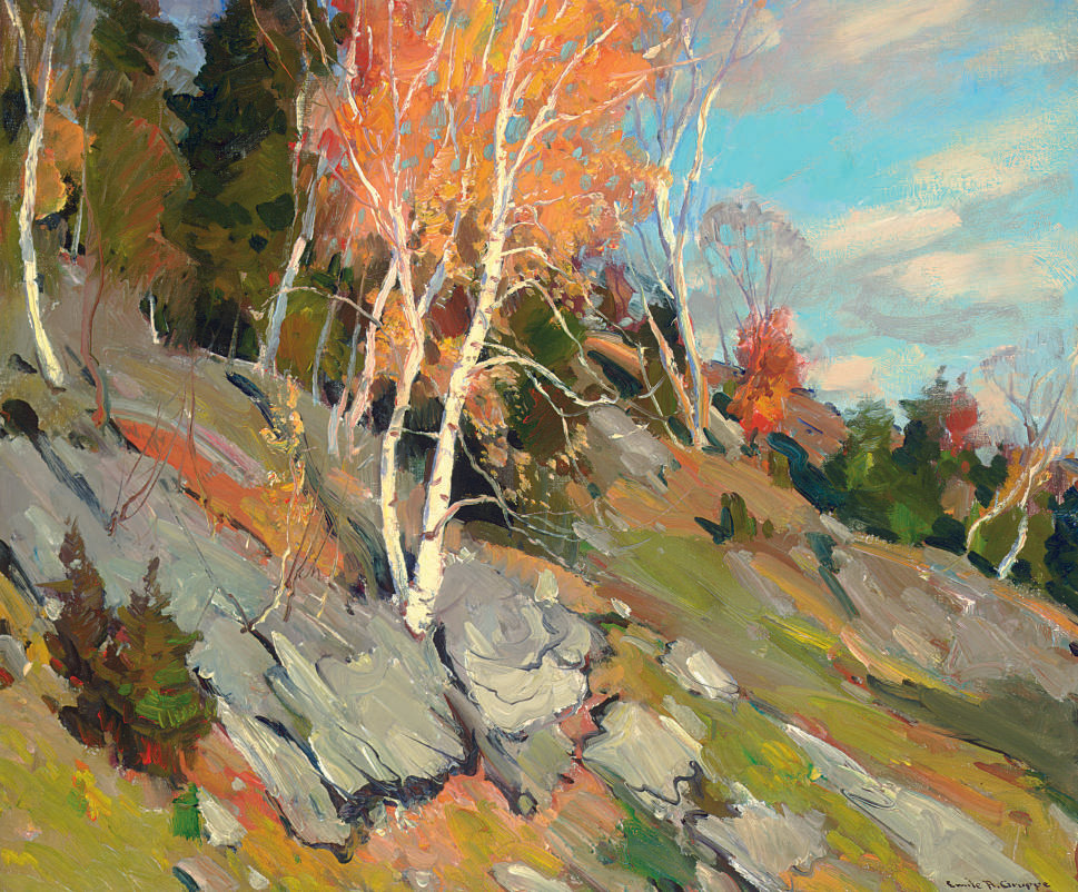 Fall Birches, Vermont