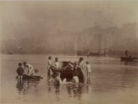 Water Rats, 1886