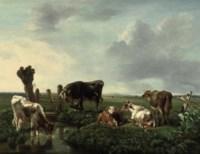 Cows resting near a stream