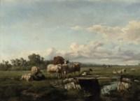 Cattle in the Meadow