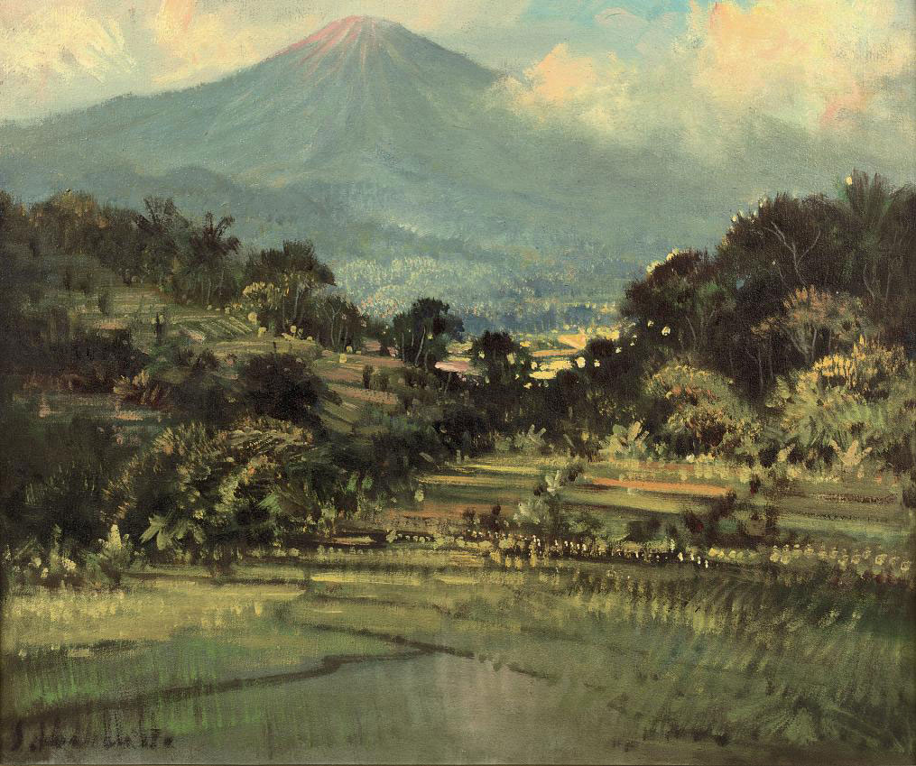 Landscape with vulcano and sawahs