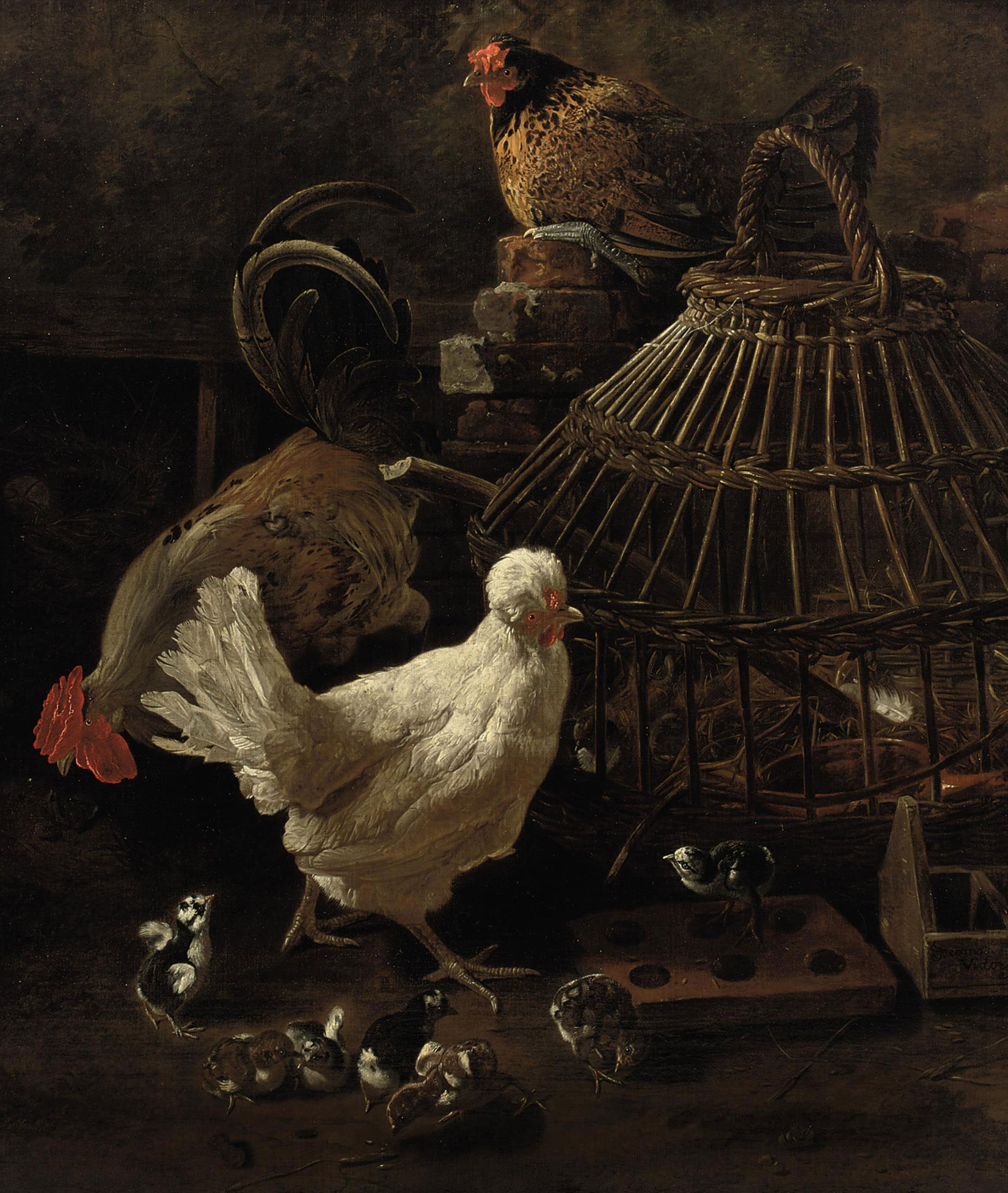 Three hens with chicks near a reed cage