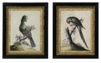 A PAIR OF GEORGE II EMBOSSED BIRD PICTURES