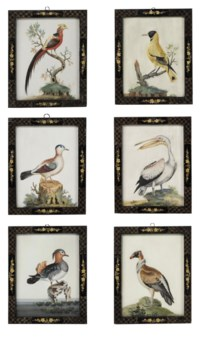 A SET OF SIX GEORGE II EMBOSSED BIRD PICTURES