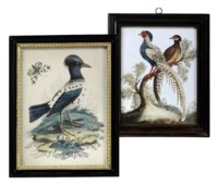 TWO GEORGE III EMBOSSED BIRD PICTURES