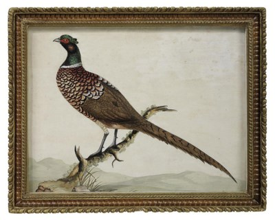 A GEORGE III EMBOSSED BIRD PIC
