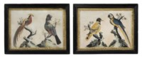 A PAIR OF GEORGE III EMBOSSED BIRD PICTURES
