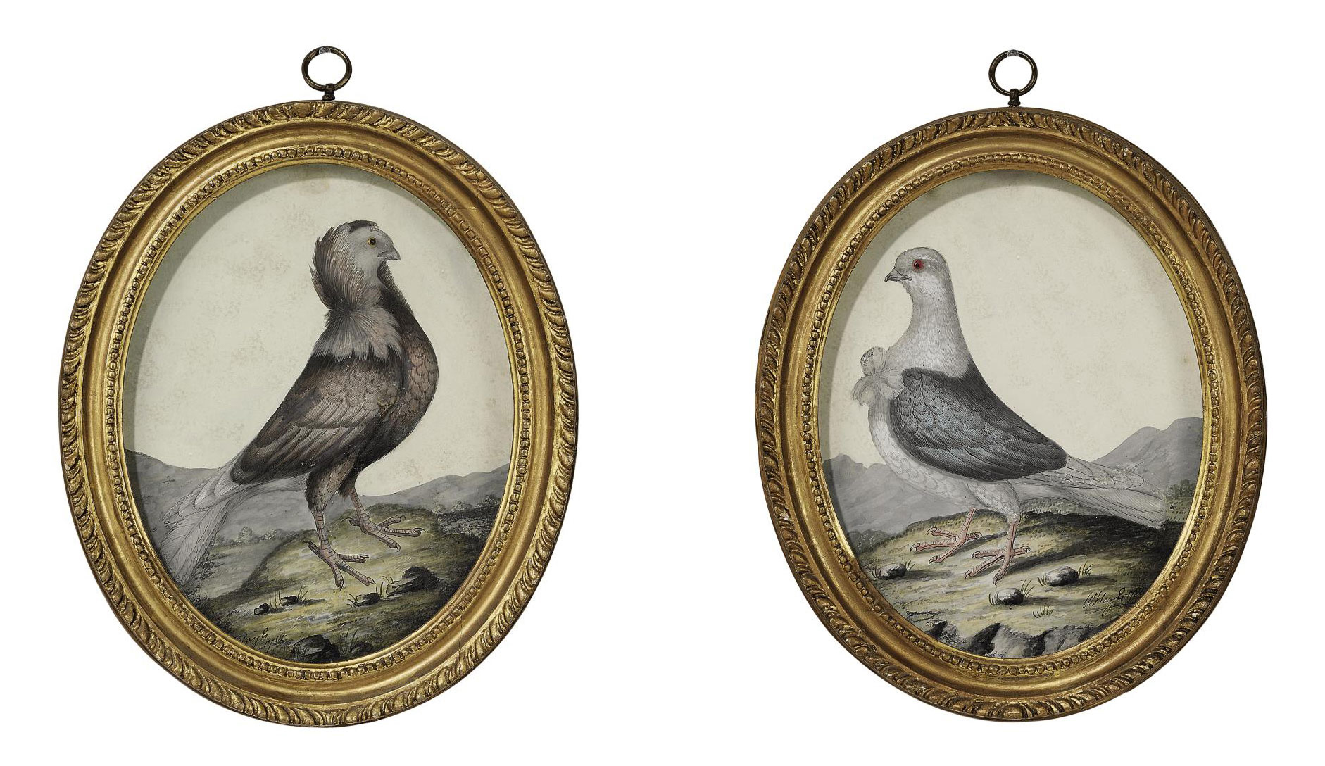 A PAIR OF GEORGE III OVAL EMBOSSED BIRD PICTURES